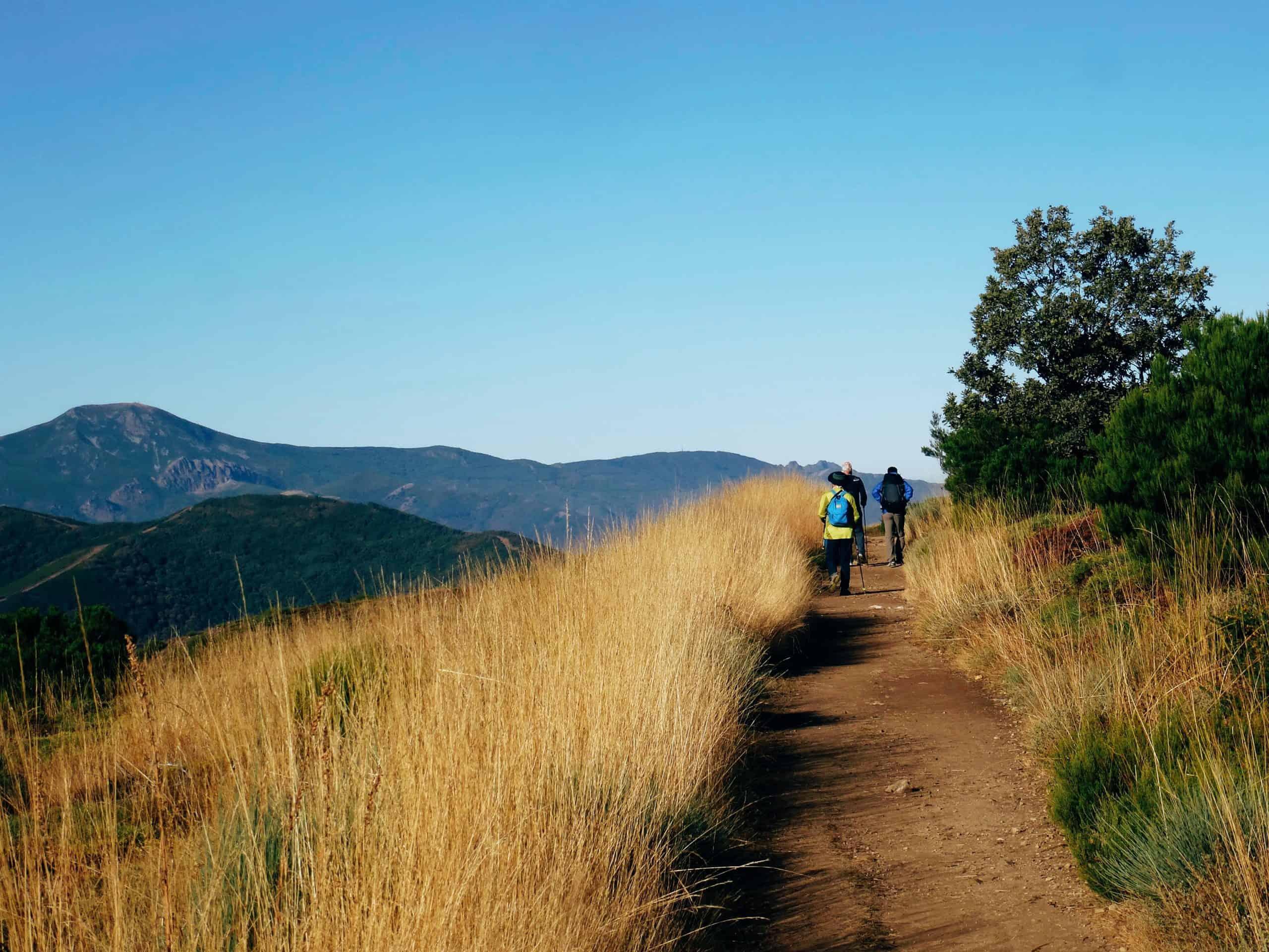 Camino – September 2021