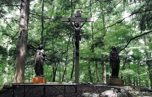 """Jesus in the Woods"" at University of Notre Dame"